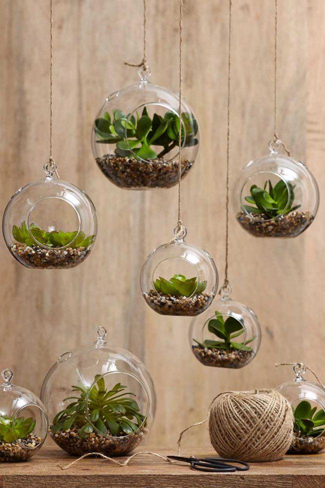 10. Hanging terrarium