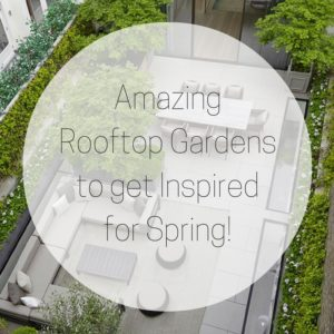 Amazing Rooftop Gardens to get Inspiredfor Spring!