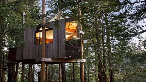10 Amazing Tree Houses